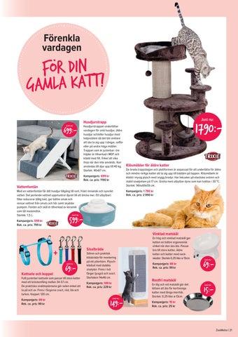 Page 21 of Så löser du fem vanliga kattproblem