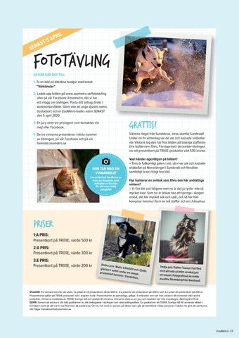 Page 23 of Fototävling
