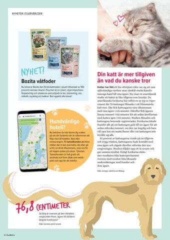 Page 4 of Nyheter från djurvärlden