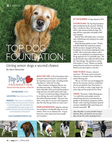 Page 10 of Top Dog Foundation