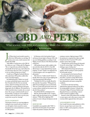Page 14 of CBD and Pets