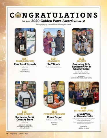 Page 16 of Golden Paws Award Winners