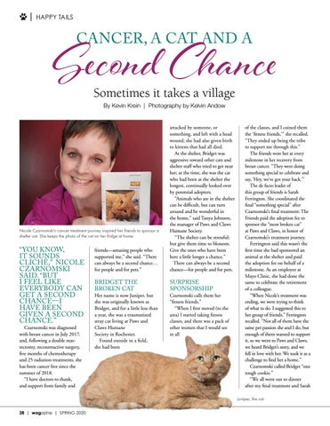 Page 28 of Cancer, a Cat and a Second Chance