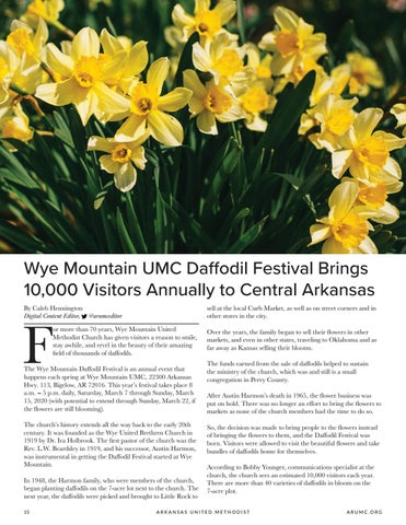 Page 16 of Wye Mountain UMC Daffodil Festival Brings 10,000 Visitors Annually to Central Arkansas