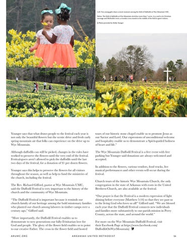Page 17 of Wye Mountain UMC Daffodil Festival Brings 10,000 Visitors Annually to Central Arkansas