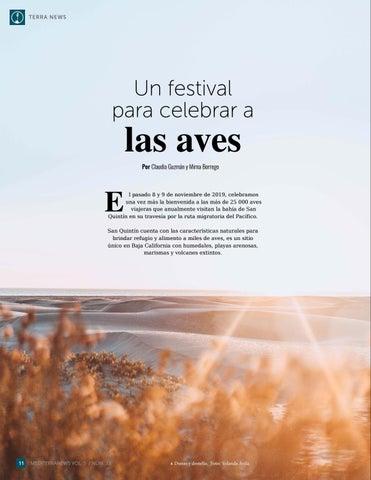 Page 12 of Un festival para celebrar a las aves