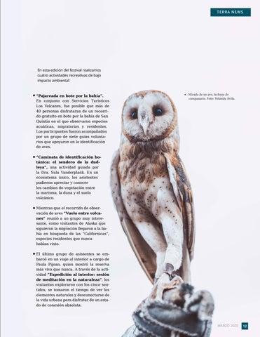 Page 13 of Un festival para celebrar a las aves