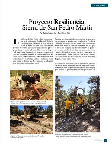 Page 19 of Proyecto Resiliencia: Sierra de San Pedro Mártir