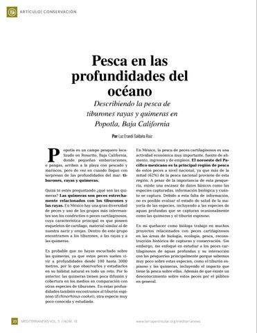 Page 24 of Pesca en las profundidades del océano