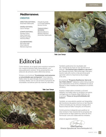 Page 3 of Editorial