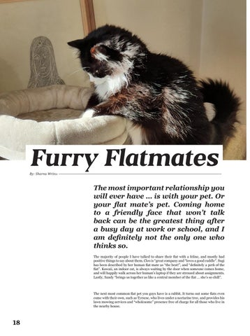 Page 18 of Furry Flatmates