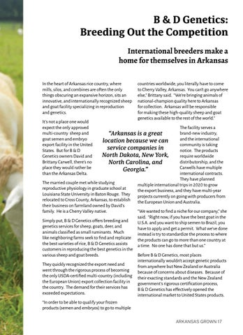 Page 21 of B & D Genetics: Breeding Out the Competition
