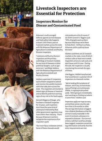 Page 60 of Livestock Inspectors are Essential for Protection