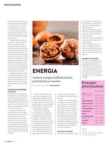 Page 20 of Rautaisannos: Energia