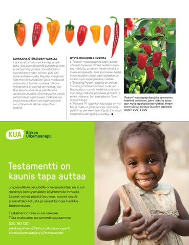 Page 41 of Minipaprikoita ruukusta