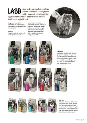 Page 37 of Nytt og bedre kjæledyrfôr fra FKRA