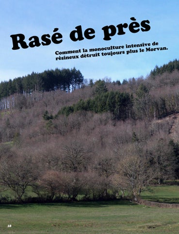 Page 14 of COUPES RASES DANS LE MORVAN