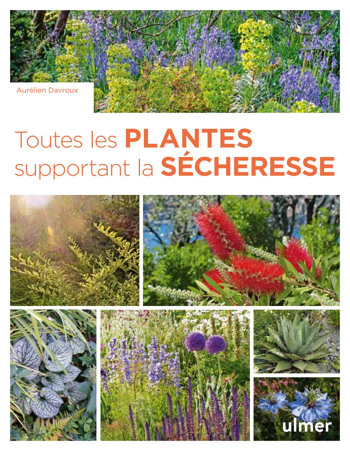 Plante Méditerranéenne Sans Arrosage extrait toutes les plantes supportant la sécheresse