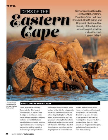 Page 24 of GEMS OF THE EASTERN CAPE