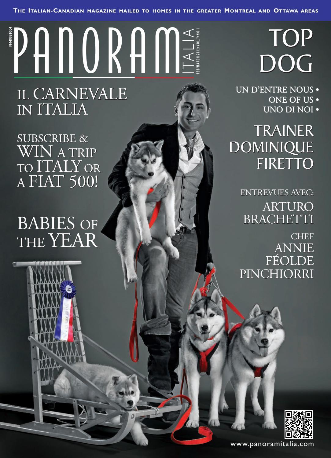 PET Dog Print piuttosto piccola Borsa-Nero BN