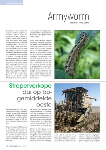 Page 40 of Armyworm alert for Free State