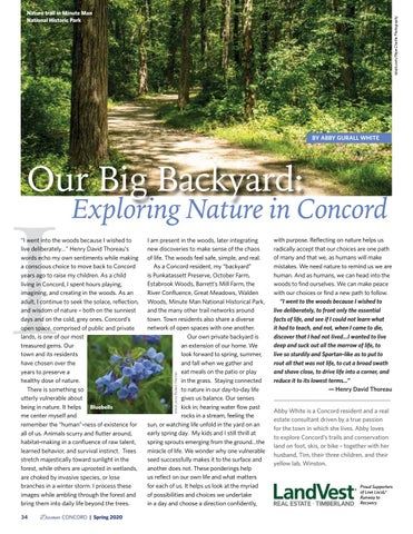 Page 36 of Our Big Backyard: Exploring Nature in Concord