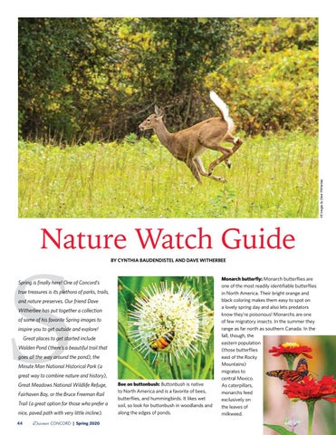 Page 46 of Nature Watch Guide