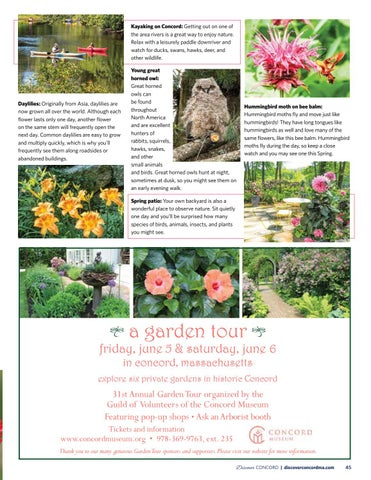 Page 47 of Nature Watch Guide
