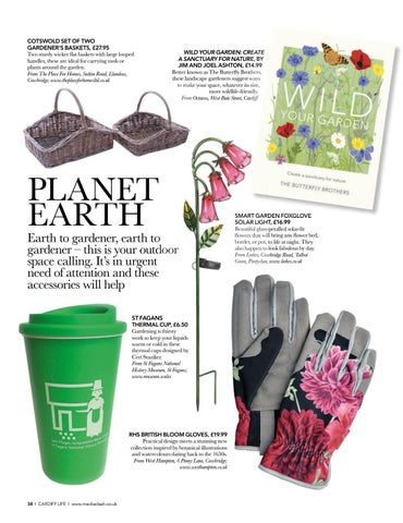Page 38 of ED'S CHOICE Little pieces of locally-sourced horticultural happiness
