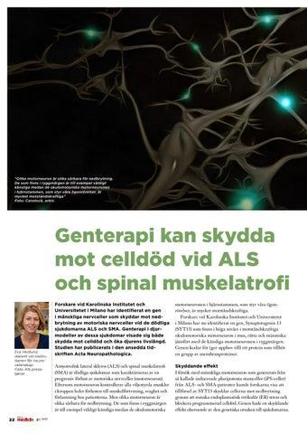 Page 22 of Genterapi kan skydda mot celldöd vid ALS och spinal muskelatrofi