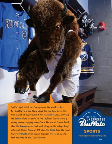 Page 27 of Buffalo's Superfans 22