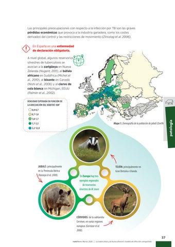 Page 39 of La tuberculosis & la fauna silvestre: modelo de infección compartida
