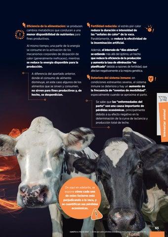 Page 67 of Estrés por calor: pérdidas económicas en la granja lechera (parte 1ª