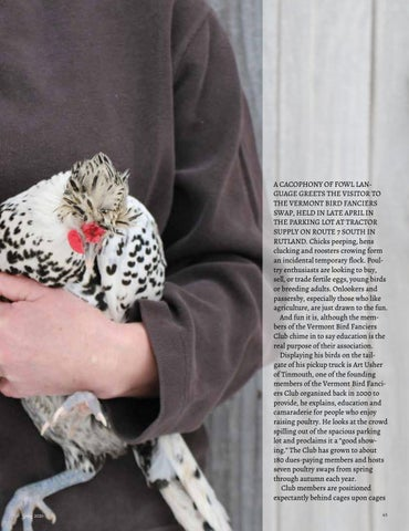 Page 67 of Vermont Bird Fanciers' Swap Susan Orzell-Rantanen