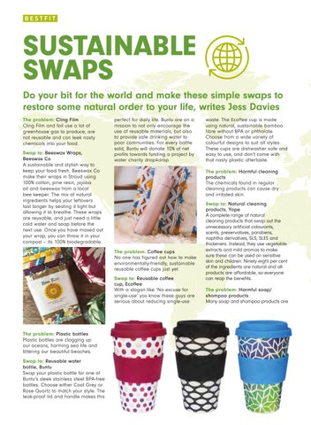 Page 22 of Sustainable Swaps