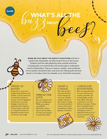 Page 50 of What's All The Buzz About Bees?