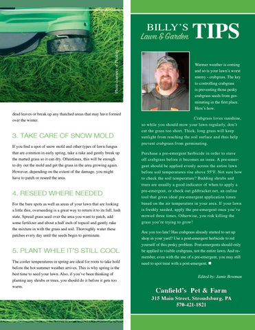 Page 51 of Billy'sTipsforControlling Crabgrass