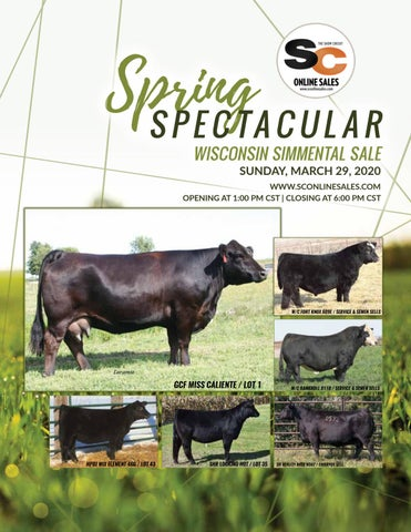 Wisconsin Spring Spectacular Sale By Generation 6 Marketing Issuu