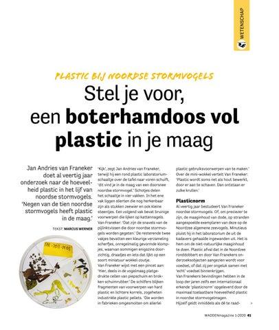 Page 41 of Plastic bij Noordse stormvogels 'Stel je voor een boterhamdoos vol plastic in je maag'