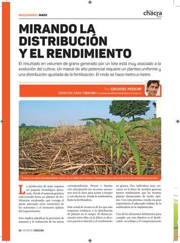 Page 62 of Mirando la distribución y el rendimiento
