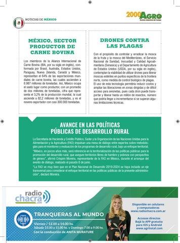 Page 97 of Panorama de México