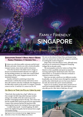 Page 14 of Family Friendly SINGAPORE
