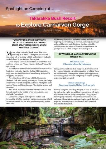 Page 18 of Explore Carnarvon Gorge