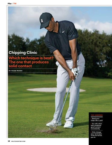 Page 18 of Chipping Clinic