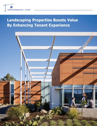Page 10 of Landscaping Boosts Values