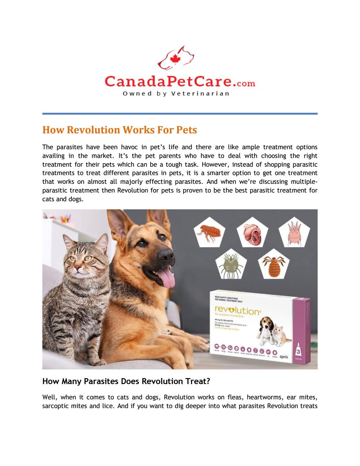 How Revolution Works For Pets By Jessermcdaniel Issuu