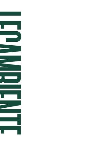 £ 109 LACOSTE ORIGINALI Uomo Limited Edition Polo FR 4//5 S//M Prezzo consigliato