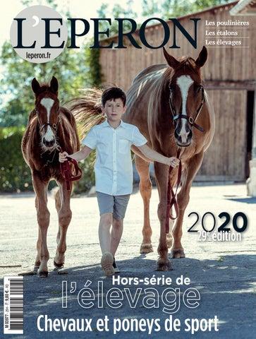 Chevaux à vendre - Annonces vente cheval