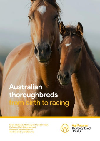 """Cover of """"Australian Thoroughbreds From Birth To Racing"""""""