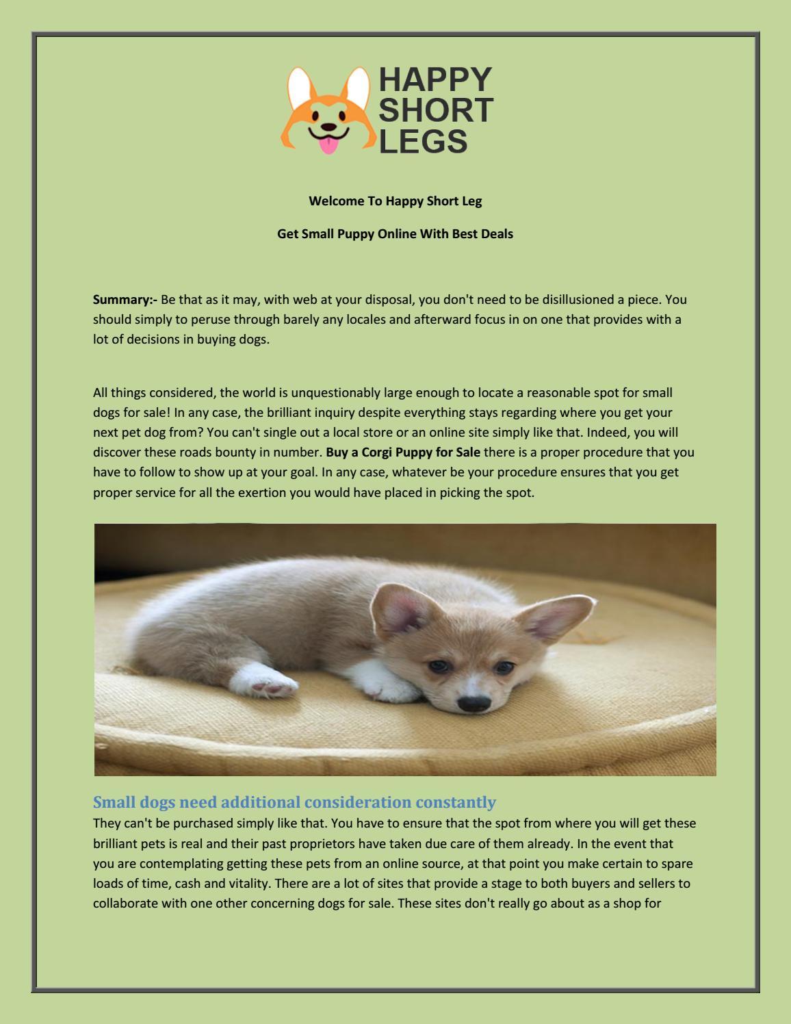 Get Small Puppy Online With Best Deals By Happyshortlegs Issuu